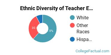 Ethnic Diversity of Teacher Education Subject Specific Majors at Lindsey Wilson College