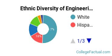 Ethnic Diversity of Engineering Majors at Manhattan College
