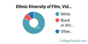Ethnic Diversity of Film, Video & Photographic Arts Majors at McDaniel College