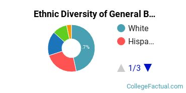 Ethnic Diversity of General Business/Commerce Majors at McMurry University