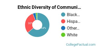 Ethnic Diversity of Community Organization & Advocacy Majors at Metropolitan College of New York