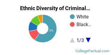 Ethnic Diversity of Criminal Justice & Corrections Majors at Metropolitan State University