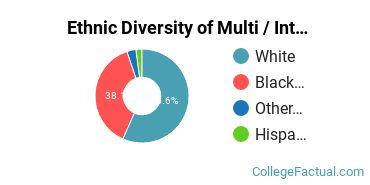 Ethnic Diversity of Multi / Interdisciplinary Studies Majors at Mississippi State University