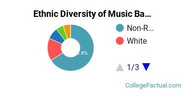 Ethnic Diversity of Music Majors at Musicians Institute