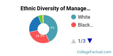 Ethnic Diversity of Management Sciences & Quantitative Methods Majors at National Louis University