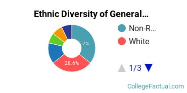 Ethnic Diversity of General Architecture Majors at New Jersey Institute of Technology