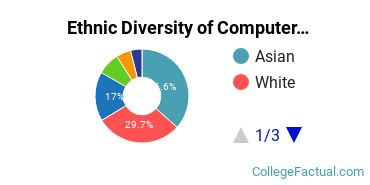 Ethnic Diversity of Computer Information Systems Majors at New Jersey Institute of Technology