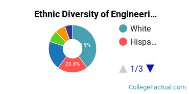 Ethnic Diversity of Engineering Majors at New Jersey Institute of Technology