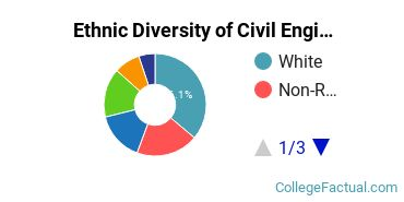 Ethnic Diversity of Civil Engineering Majors at New Jersey Institute of Technology