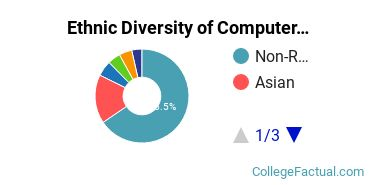 Ethnic Diversity of Computer & Information Sciences Majors at New York Institute of Technology
