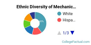 Ethnic Diversity of Mechanical Engineering Majors at New York Institute of Technology