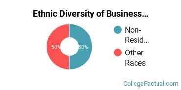 Ethnic Diversity of Business/Managerial Economics Majors at New York University
