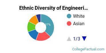 Ethnic Diversity of Engineering Majors at Northwestern University