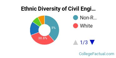 Ethnic Diversity of Civil Engineering Majors at Northwestern University