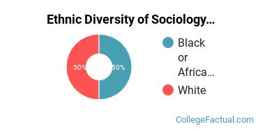 Ethnic Diversity of Sociology Majors at Ohio Northern University