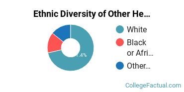 Ethnic Diversity of Other Health Professions Majors at Ohio University - Southern Campus