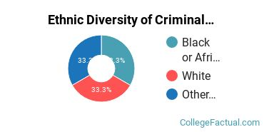 Ethnic Diversity of Criminal Justice & Corrections Majors at Ohio Valley University
