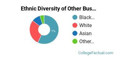 Ethnic Diversity of Other Business, Management & Marketing Majors at Oklahoma Christian University