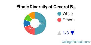 Ethnic Diversity of General Business/Commerce Majors at Oklahoma Christian University