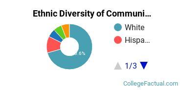 Ethnic Diversity of Communication & Journalism Majors at Oklahoma Christian University