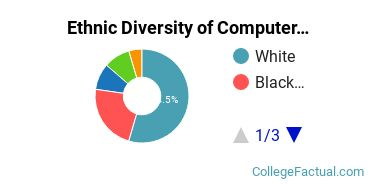 Ethnic Diversity of Computer Software & Applications Majors at Pace University - New York