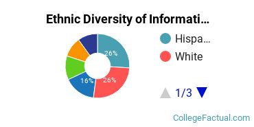 Ethnic Diversity of Information Technology Majors at Pace University - New York