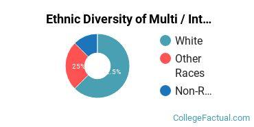 Ethnic Diversity of Multi / Interdisciplinary Studies Majors at Pace University - New York