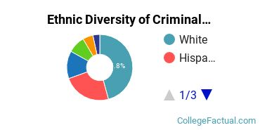 Ethnic Diversity of Criminal Justice & Corrections Majors at Pace University - New York