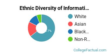 Ethnic Diversity of Information Technology Majors at Pennsylvania State University - Harrisburg