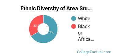 Ethnic Diversity of Area Studies Majors at Pitzer College