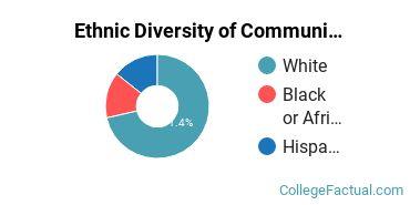 Ethnic Diversity of Communication & Media Studies Majors at Presentation College