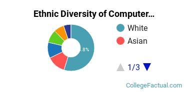 Ethnic Diversity of Computer & Information Sciences Majors at Regis University