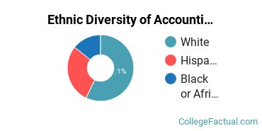 Ethnic Diversity of Accounting Majors at Rhode Island College
