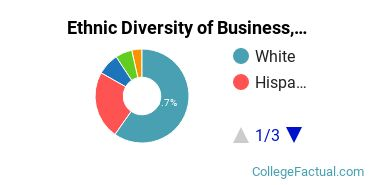 Ethnic Diversity of Business, Management & Marketing Majors at Rhode Island College