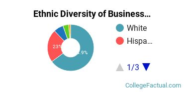 Ethnic Diversity of Business Administration & Management Majors at Rhode Island College