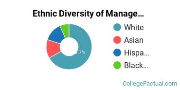 Ethnic Diversity of Management Information Systems Majors at Rhode Island College