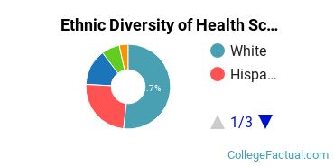 Ethnic Diversity of Health Sciences & Services Majors at Rhode Island College