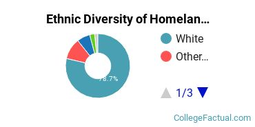 Ethnic Diversity of Homeland Security, Law Enforcement & Firefighting Majors at Roger Williams University