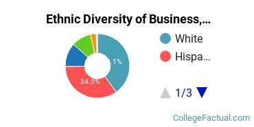 Ethnic Diversity of Business, Management & Marketing Majors at Saint Edward's University