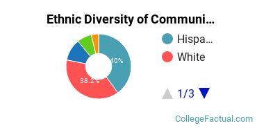 Ethnic Diversity of Communication & Media Studies Majors at Saint Edward's University