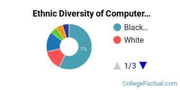 Ethnic Diversity of Computer & Information Sciences Majors at Saint Mary's University of Minnesota