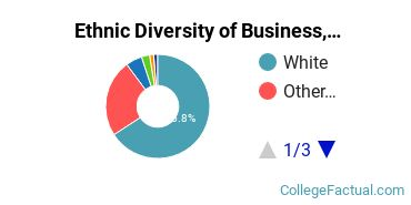 Ethnic Diversity of Business, Management & Marketing Majors at Salve Regina University