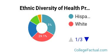 Ethnic Diversity of Health Professions Majors at San Diego State University