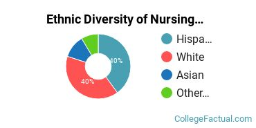 Ethnic Diversity of Nursing Majors at San Diego State University