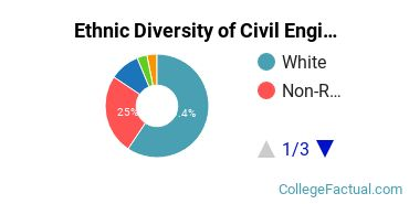 Ethnic Diversity of Civil Engineering Majors at Southern Illinois University Carbondale