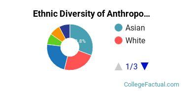 Ethnic Diversity of Anthropology Majors at Stanford University