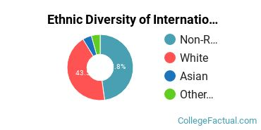 Ethnic Diversity of International Relations & National Security Majors at Stanford University