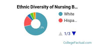 Ethnic Diversity of Nursing Majors at Texas Christian University