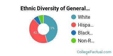 Ethnic Diversity of General Architecture Majors at Texas Tech University