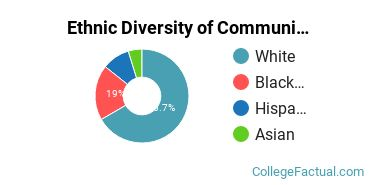 Ethnic Diversity of Communication & Journalism Majors at The University of West Florida